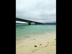 途中、絶景が有名な古宇利大橋で休憩!