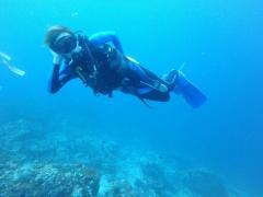 優雅に青い海を泳ぐは大樹幹部補佐!本当に真っ青です…!